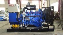 Biogas 30kw gas electricity generator