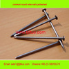 Wire nails factory stainless steel wire nails