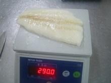 arrowtooth flounder fillet