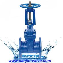 ANSI rubber gate valve ansi125ansi150 gate valve cast iron