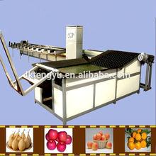 Cherry tomato / Cherry /Plum washing machine drying machine sorting machine
