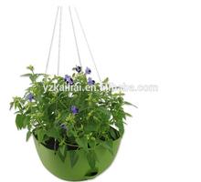 hanging basket/planter