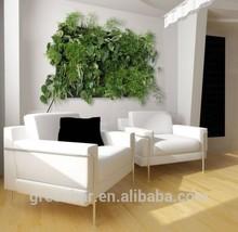 alimentazione modulare verticale parete verde fioriera muro