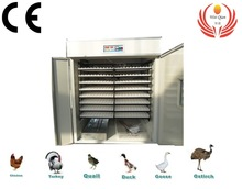Chicken,Bird,,Duck egg automatic incubator WQ-2816
