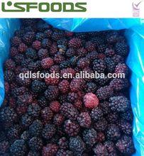 Wholesale China Frozen Blackberry HOT SALE