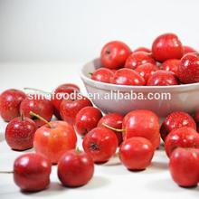 shan zha dry hawthorn fruits hawthorn berry
