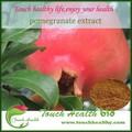 Touchhealthy liefern granatapfel p. E./granatapfel Pulver/granatapfelsaft pulver