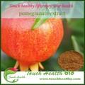 Touchhealthy liefern bio-granatapfelsaft pulver, natürliche granatapfel schälen extrakt
