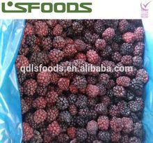 Wholesale China IQF Frozen Blackberry TOP SALE