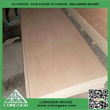 door skin plywood,door size plywood, wood panel door design