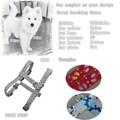 2015 Youhao para mascotas Collar de perro de cuero venta caliente Collar 15010441