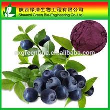 Organic Acai Berry Extract Powder/ Acai Berry Extract 20:1