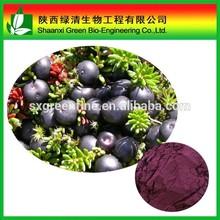 Pharmaceutical grade Acai Berry Extract 4:1, 10:1 Ratio Powder