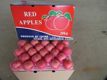 2014 Grade A fresh red Fuji apples