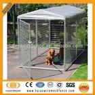 Alibaba China 2015 new hot dip galvanized cheap big dog kennel