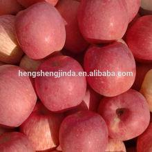 new crop blush fuji apple\