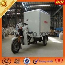 electric vehicle/three wheel motorcycle/high quality cargo auto rickshaw