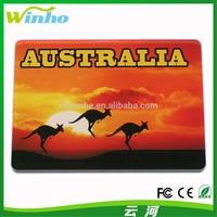 Winho Australia Tourist Souvenir Kangaroo Acrylic Fridge Magnet