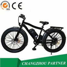 CE SGS Approved! Jiangsu Powerful City Mountain Fat Tire Snow Electric Bike