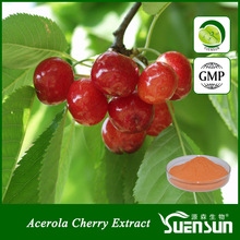 Pure organic fruit powder VC21% aracerola cherry extract