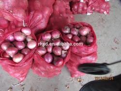New Crop 2014 Fresh Red Shallot Onion