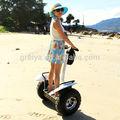 Greia fuera de la carretera de auto equilibrio scooter minimoto