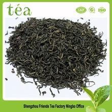 Customized organic moringa tea, china green tea