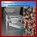 made in china professionnelle usine de transformation de noix de cajou