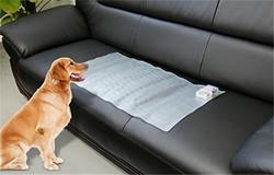 2015 new hot dog and cat training mat