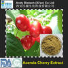 Natural Vitamin C 17% High Quality Acerola Cherry Extract Powder