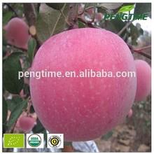 Organic fresh apple from China