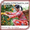 2014 New Crop Navel Orange Manufacturer Wholesale