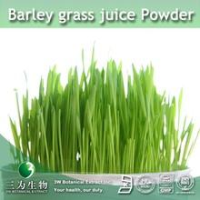 100% Pure Natural Barley grass juice Powder | Barley grass Powder | Barley juice Powder