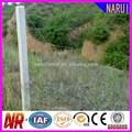 Anping fábrica de alta qualidade galvanizado revestido de pvc arame farpado comprimento por rolo( iso9001; fabricante)