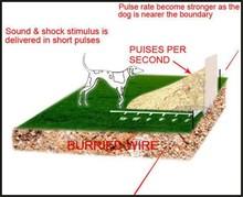 Electric Fence Dog Collar