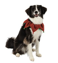 Top Paw Pet Holiday Jingle Bell Collar/Dog Apparel & Accessory