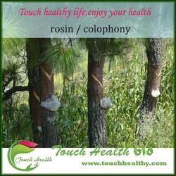 Touchhealthy supply Excellent Viscosity Resin Raw Material Gum Rosin X Grade/gum rosin price