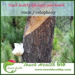 Touchhealthy supply Gum Rosin WW Grade CAS 8050-09-7 /Gum Rosin X Grade/Super Pine Gum Rosin Made in China