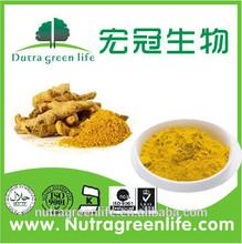 turmeric root extract/curcumin