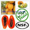 De alta calidad de papaína, la enzima de la papaya, la papaína en polvo con precio de fábrica