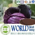 Cabbage extract/Anthocyanins 10%-35%/ Anti-Radiation