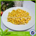 Buena calidad en lata de oro dulce de maíz en salmuera