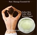 à base de plantes extrait de menthe poivrée et adoucir la peau soulager le stress massage pure huile essentielle