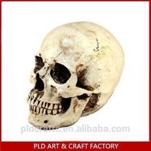 Halloween Resin Skull Head/Resin Skull/Halloween Skull Head