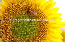 Royal Jelly, Honey, Pollen ( 25.000 mg )