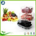 Respetuoso del medio ambiente transparente de verduras y frutas de embalaje blister de plástico bandejas y contenedores