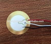 20mm piezoelectric ceramic piezo plate