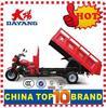 Popular 3 wheel cargo tricycle 200cc tuk tuk with Dumper