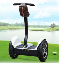 Ce approuvé New pliable Scooter électrique 1000 W