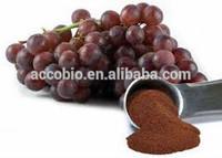 GMP Standard Grape Seed Extract OPC95%/grape seed extract capsule/grape seed extract powder